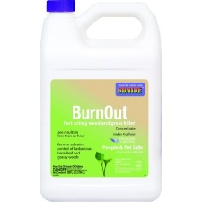 burnout_2_5_gallon